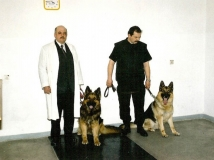 Psy do identyfikacji sladow zapachowych
