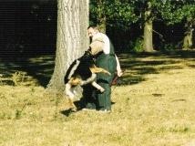 dog-attack-photo-8-working-german-shepherd breeding-napor