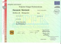 gala-napor-rodowod-1-hodowla-uzytkowych-owczarkow-niemieckich