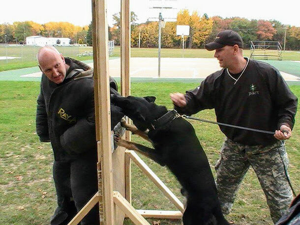 Training in K9 police department in USA